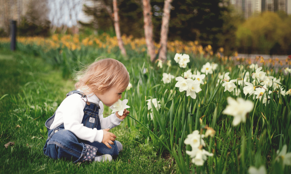 baby smelling flowers