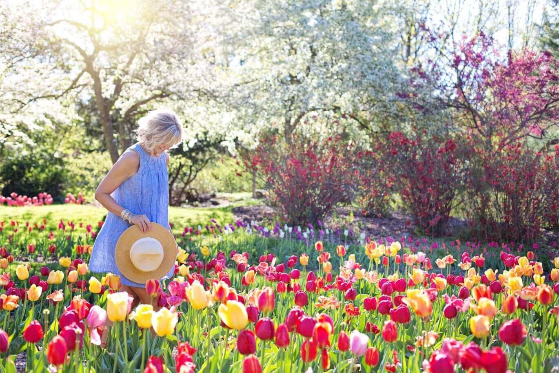 Woman walking on a tulip field