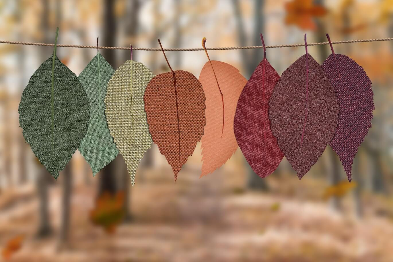 colorful autumn leafs hanging on a thread